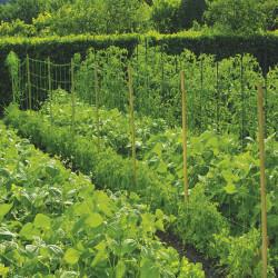 Мрежа за краставици Nortene 1.7 x 10 м. 120246 - Аксесоари за градина