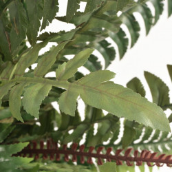 Sonata Изкуствено растение папрат със саксия, 50 см, зелено - Изкуствени цветя
