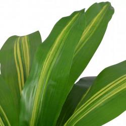 Sonata Изкуствено растение драцена със саксия, 90 см, зелено - Изкуствени цветя