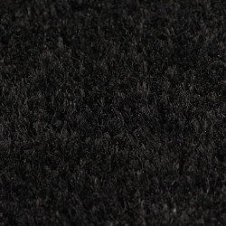 Sonata Кокосови изтривалки, 2 бр, 17 мм, 40x60 см, черни - Изтривалки и Поставки за чадъри