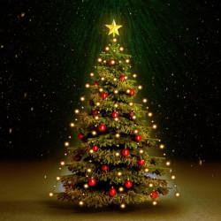 Sonata Коледни лампички мрежа 180 LED закрито и открито IP44 180 см - Сезонни и Празнични Декорации