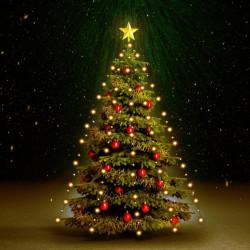 Sonata Коледни лампички мрежа 210 LED закрито и открито IP44 210 см - Сезонни и Празнични Декорации
