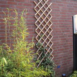 Nature Градинска пергола, 45x180 см, бамбук, 6040720 - Външни Структури
