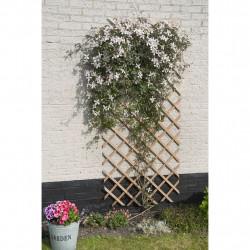 Nature Решетка за цветя, 50x150 см, дърво, естествен цвят - Аксесоари за градината