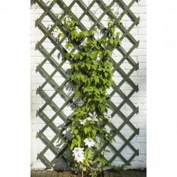 Nature Градинска решетка за цветя, 50x150 см, дърво, зелена - Аксесоари за градината