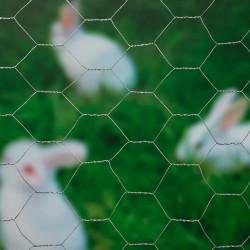 Nature Телена мрежа хексагонална 0,5x2,5 м 25 мм поцинкована стомана - Огради