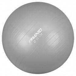Avento Фитнес/гимнастическа топка, диаметър 55 см, сребриста - Обзавеждане на Бизнес обекти
