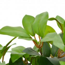 Sonata Изкуствено растение лаврово дърво със саксия, зелено, 40 см - Изкуствени цветя